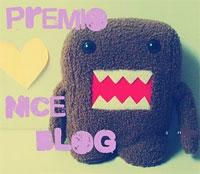 Premio17-nice-blog