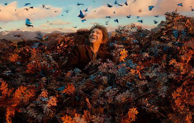 hobbit-desolation-of-smaug-bilbo-treetop
