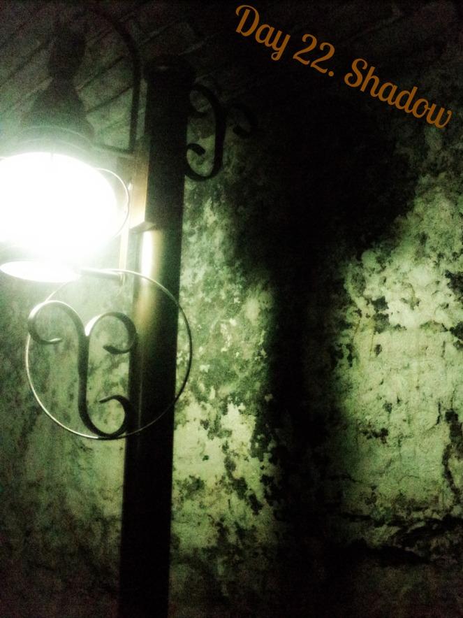 22.Shadow