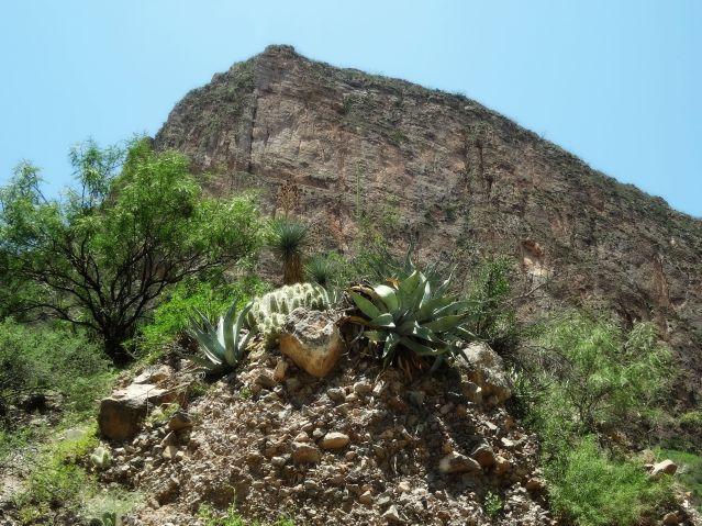 Cañón de Jimulco Coahuila México