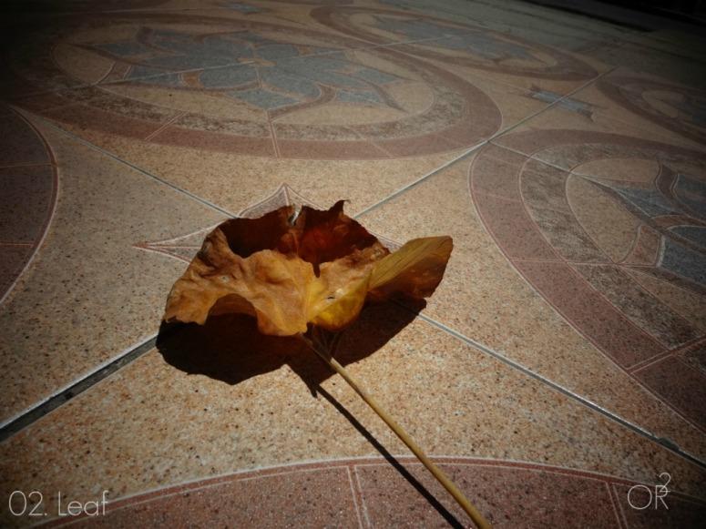 02.Leaf.jpg