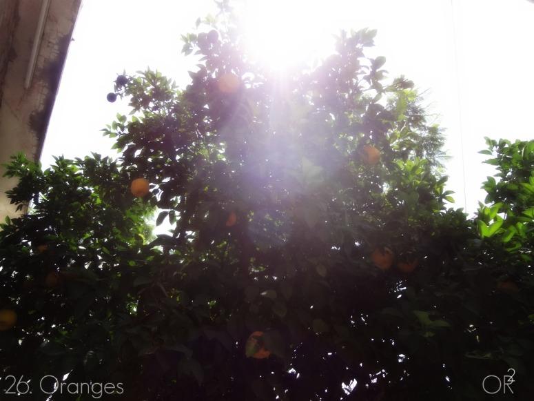 26.Oranges.jpg