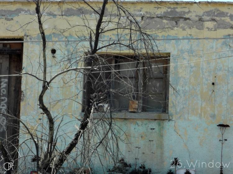 26.Window