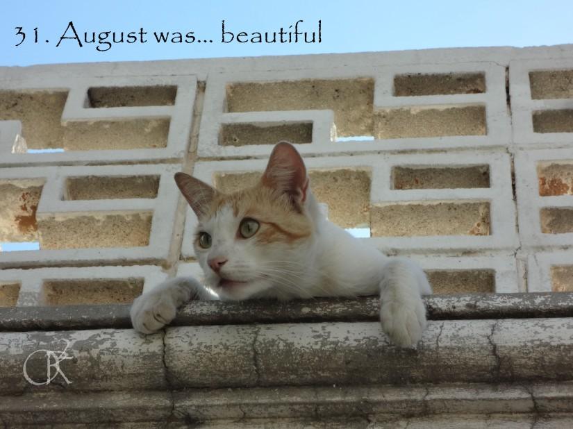 31.August Was.jpg